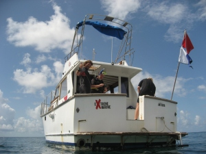 A great place to dive when visiting Antigua.