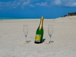champers-darkwood-beach2