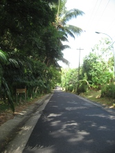 Fig Tree Drive