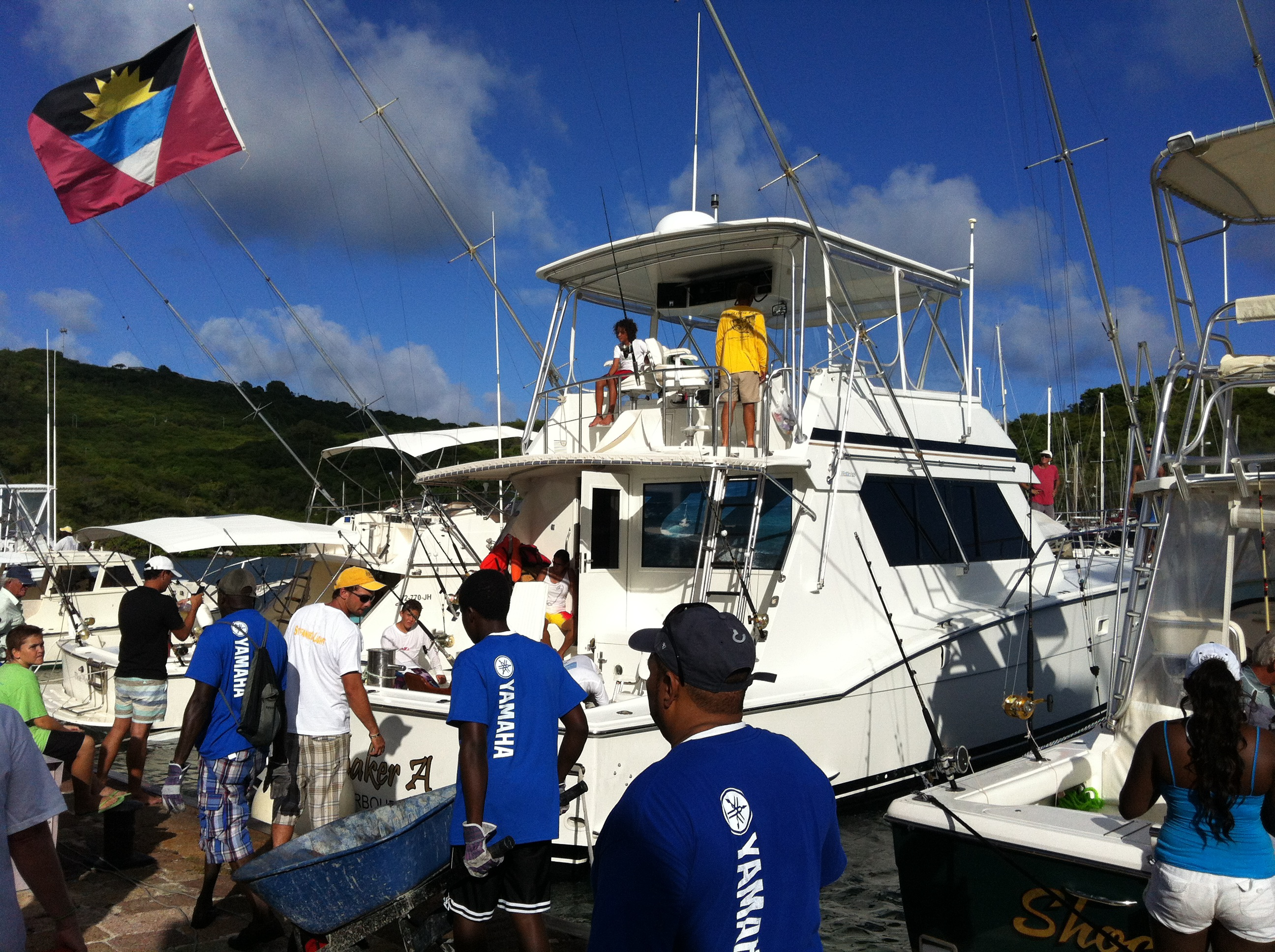 The antigua fishing tournament 2013 best antigua for Tournament fish weighing scales