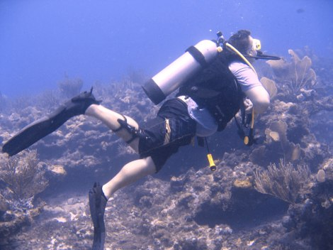 Antigua Diving
