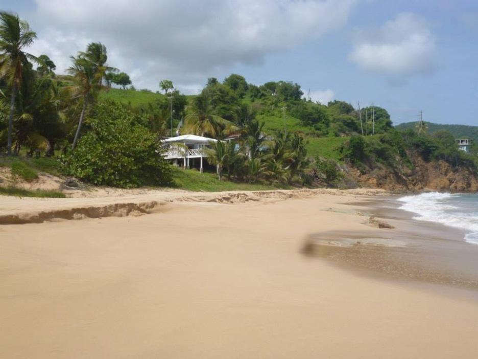 beach-bar-restuaurant