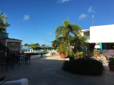 Courtyard = WIFI !
